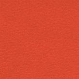 arancio-7619
