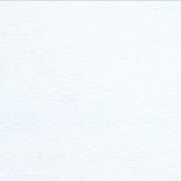 bianco-7850-pelle