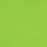 verde-7622